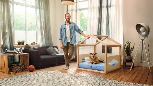 Hund, Katze, Vogel, DIY für die Tiere