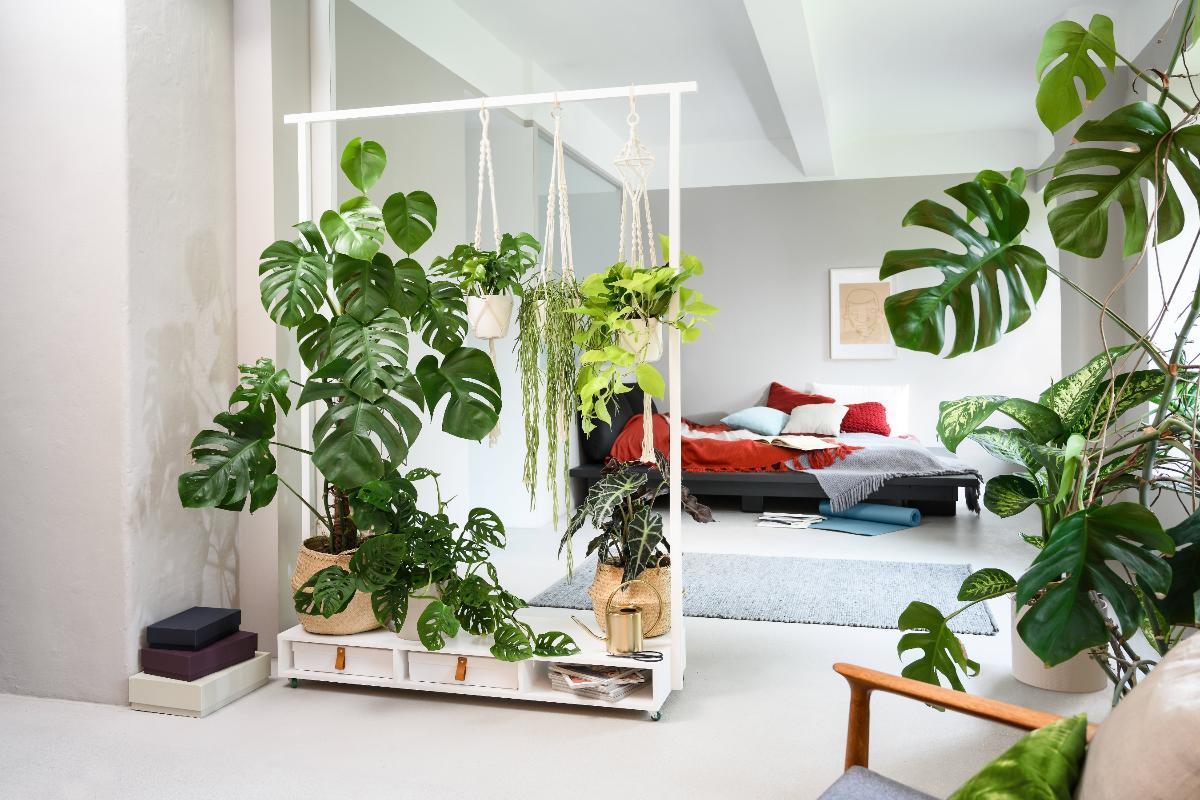 Der Moderne Pflanzen Raumteiler Bosch Diy