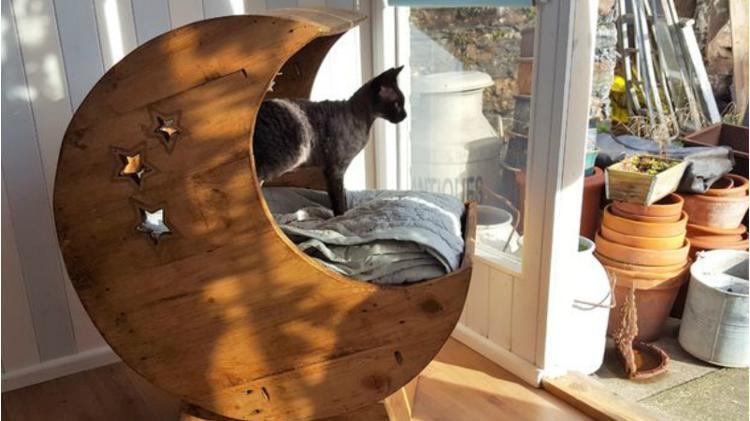 A homemade cat bed in the shape of a moon